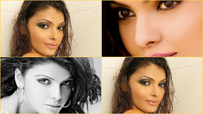 sherlyn chopra hot playboy pictures/pics/photos video twitter gallery latest official movies