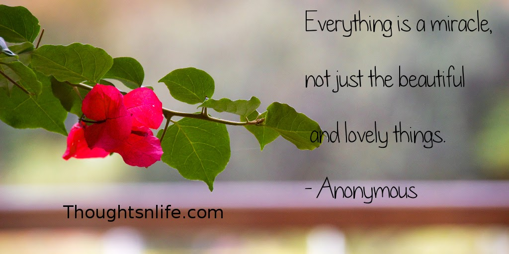 Thoughtsnlife.com: Everything is a miracle, not just the beautiful and lovely things. - Anonymous