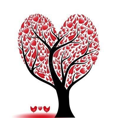 tuis amor