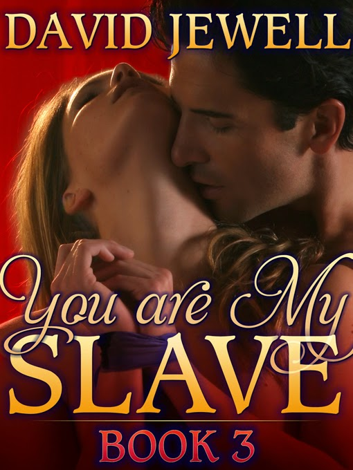 https://sizzlereditions.com/you-are-my-slave-book-3-by-david-jewell/