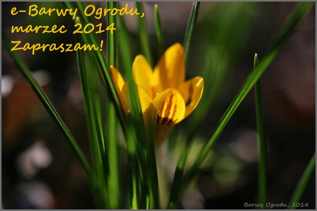 e-magazyn Barwy Ogrodu 03/2014