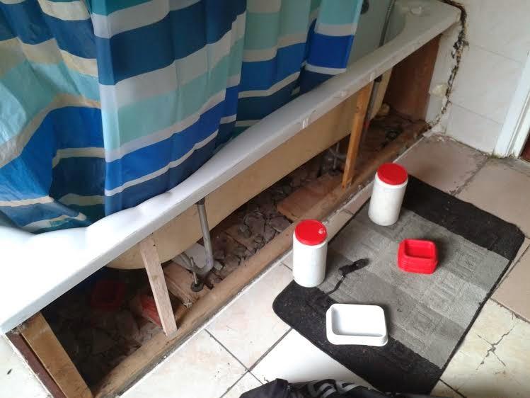 Mice Control in London. Baiting
