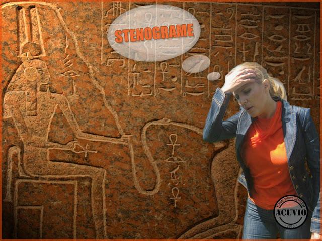 Funny photo Elena Udrea Stenograme