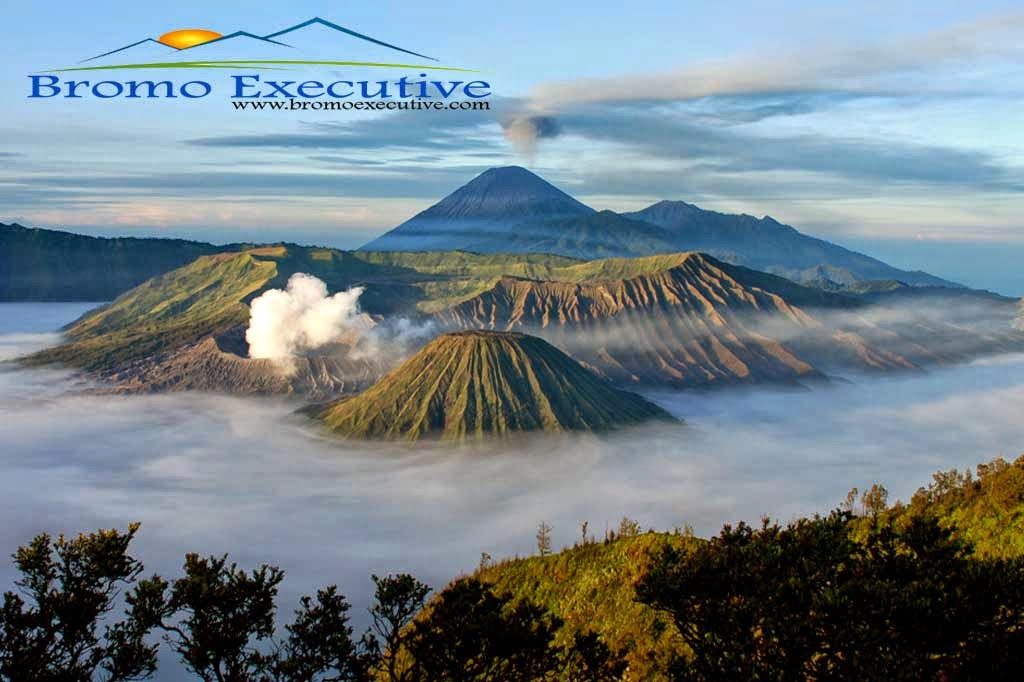 Bromo Tour Package : Fun holiday to Mount Bromo and Ijen Crater