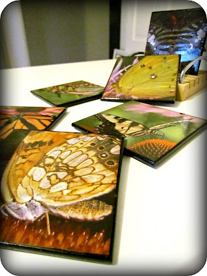 DIY Coasters, Easy DIY, Coaster Craft, Easy Kids Craft, Butterflies, Mod Podge, Easy Mod Podge, Decoupage