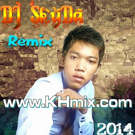 Album Mix: DJ SkyDa Remix 2014