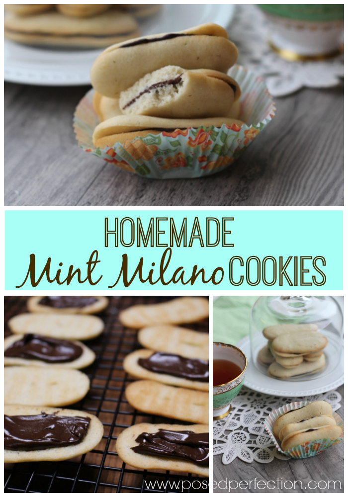 These Homemade Mint Milano Cookies make a great substitute for the store-bought variety. You probably already have everything you need to make these buttery mint cookies at home.