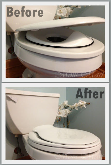 Potty Training with the Kohler Transistions Toilet Seat