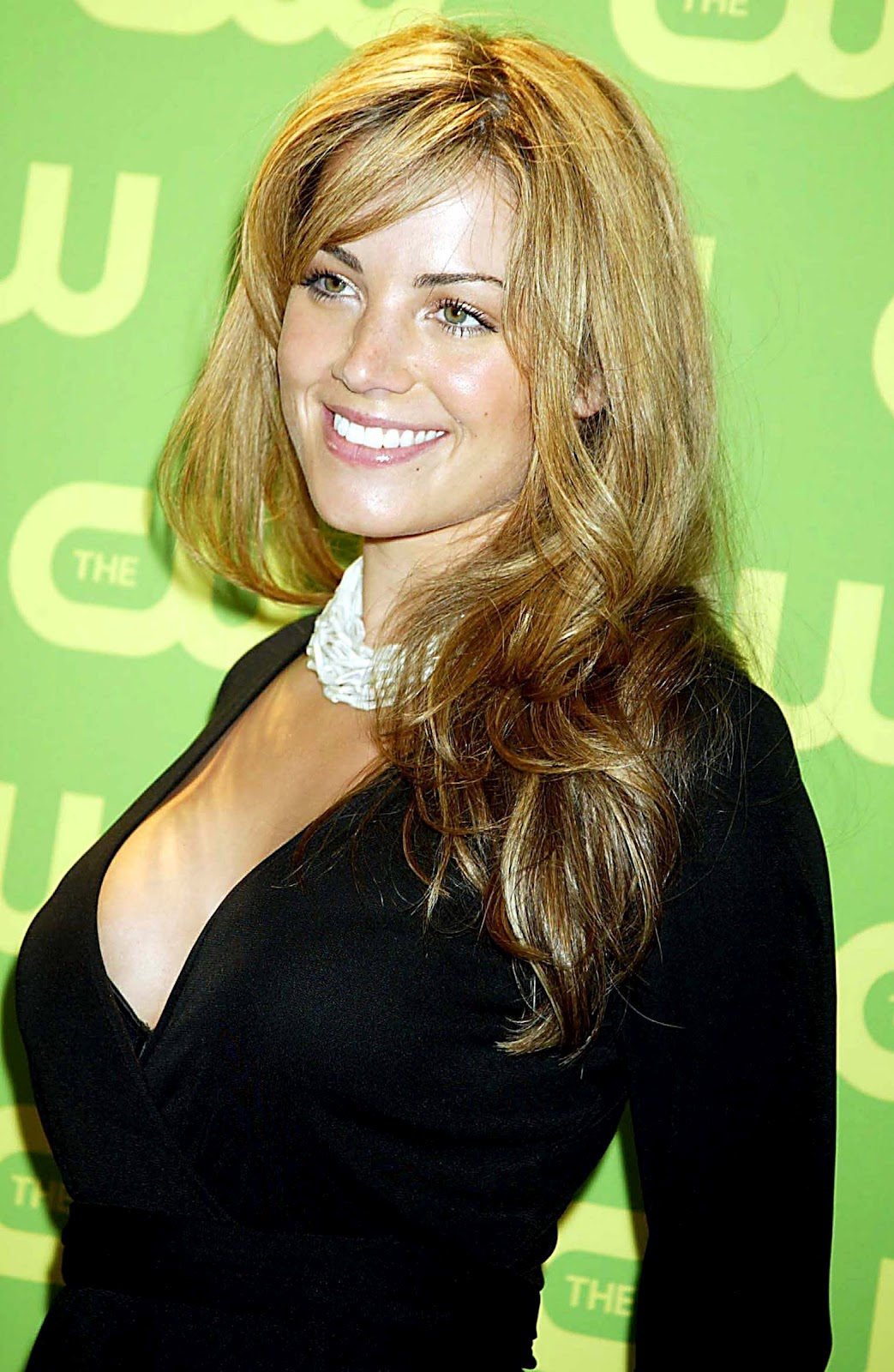 New Nices Wallpapers Erica Durance Cleavage