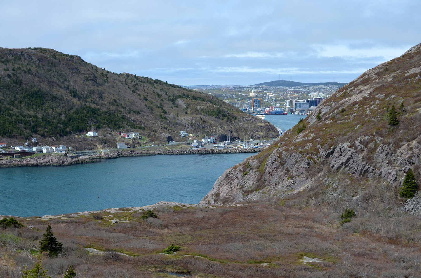 View of St. John's Harbour from Signal Hill