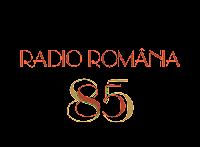 http://www.rador.ro/events/2013-11-01_aniversare_srr/index.html