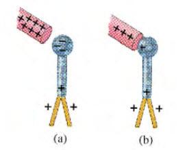 Elektroskop dimuati (a) dengan cara induksi, (b) dengan cara konduksi.