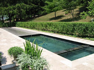 Home and garden lap pool design for Pool design 101