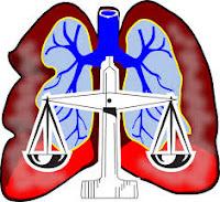 Encuentre las respuestas a las preguntas legales relacionadas con el amianto . Lea sobre el proceso de demanda mesotelioma y cómo chooose un abogado de mesotelioma.