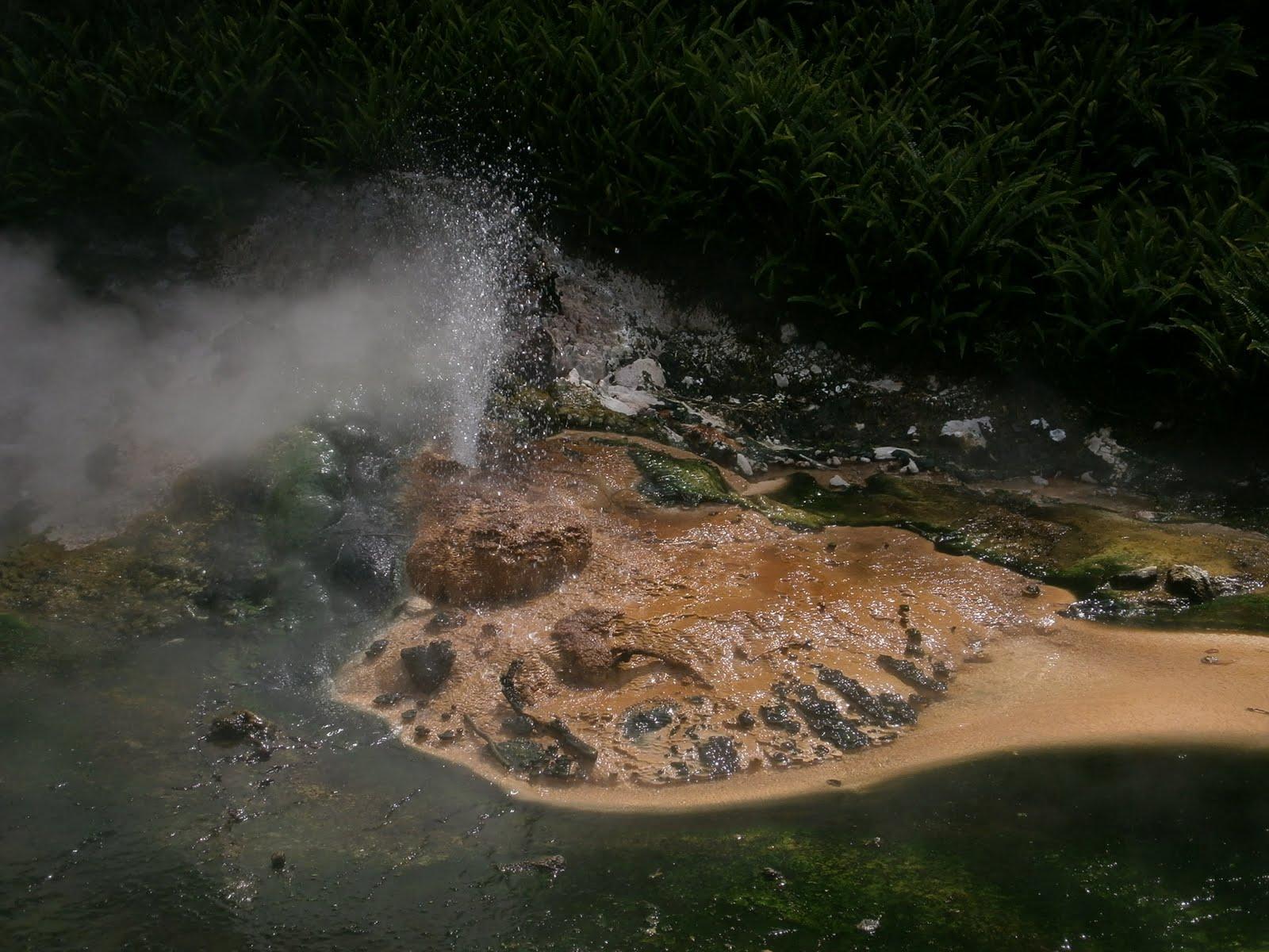 Die Landschaft Vor Allem Der Nordinsel Ist Stark Vom Vulkanismus  Gekennzeichnet. Die Küsten Sind Stark Gegliedert, Meist Steil, Mit Vielen  Kaps.
