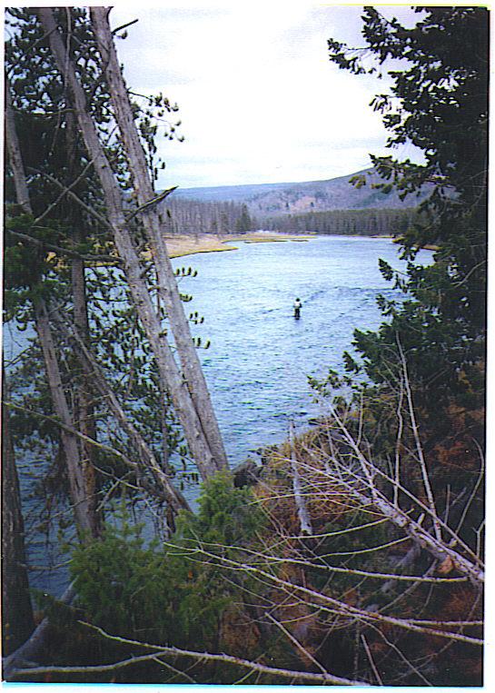 Troutbirder montana flyfishing the big hole river for Big hole river fly fishing