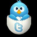 Follow @zeneanoak !