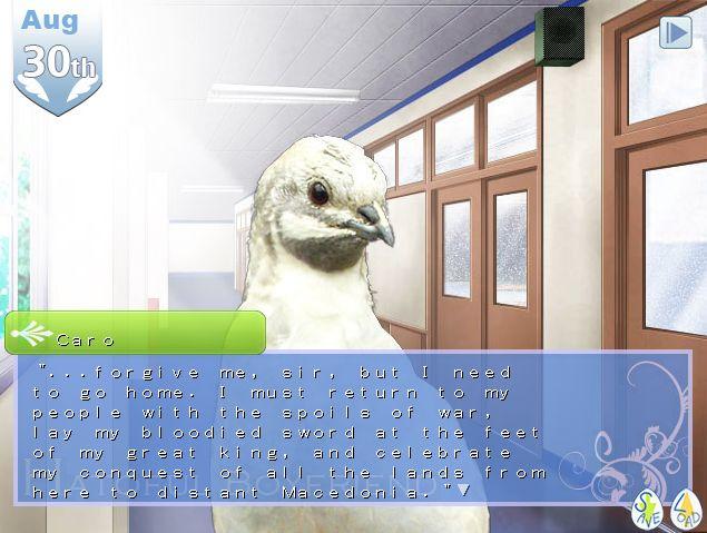 Nanaki Kazuaki-Math teacher, pigeon