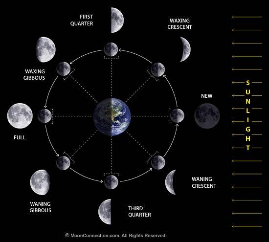 8 Fase Bulan