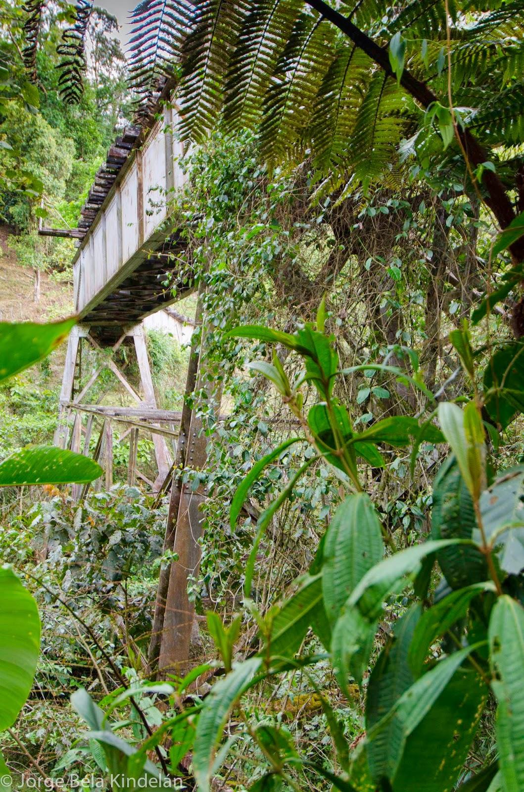 Los antiguos puentes del tren se pueden vadear fácilmente. Foto: Jorge Bela