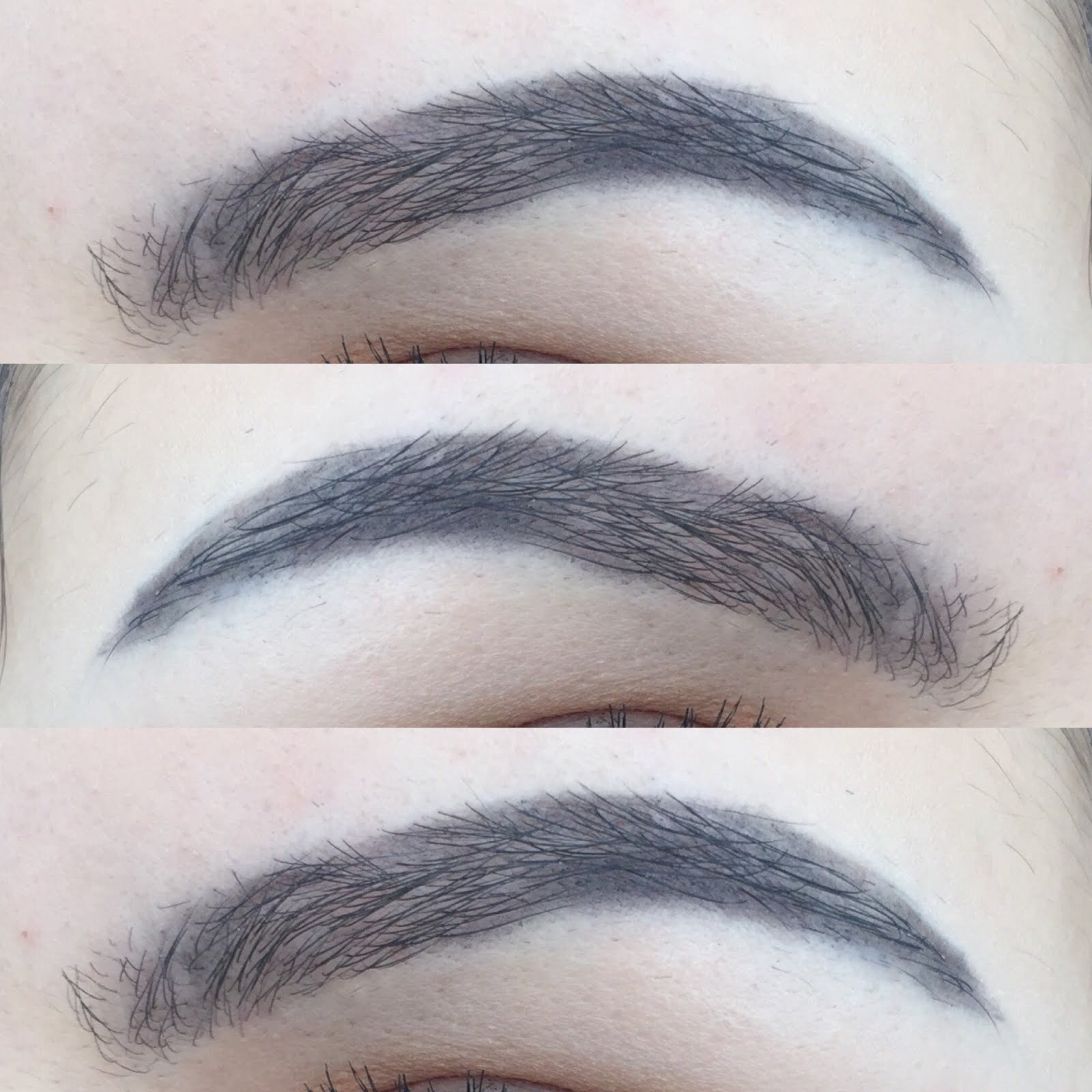 Anastasia Beverly Hills Brow Definer Review Sophia Lcs