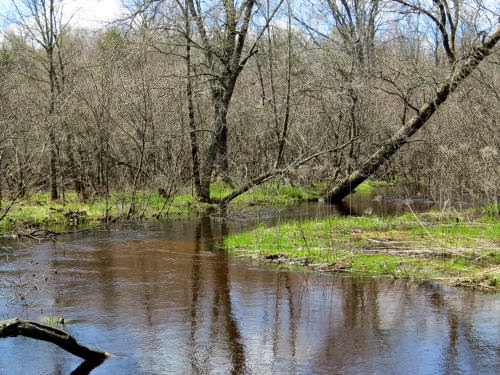 Baldwin River