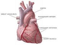 9 Gangguan  pada Jantung