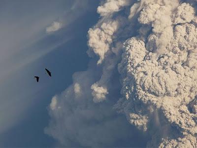 erupcion del volcan puyehue en chile