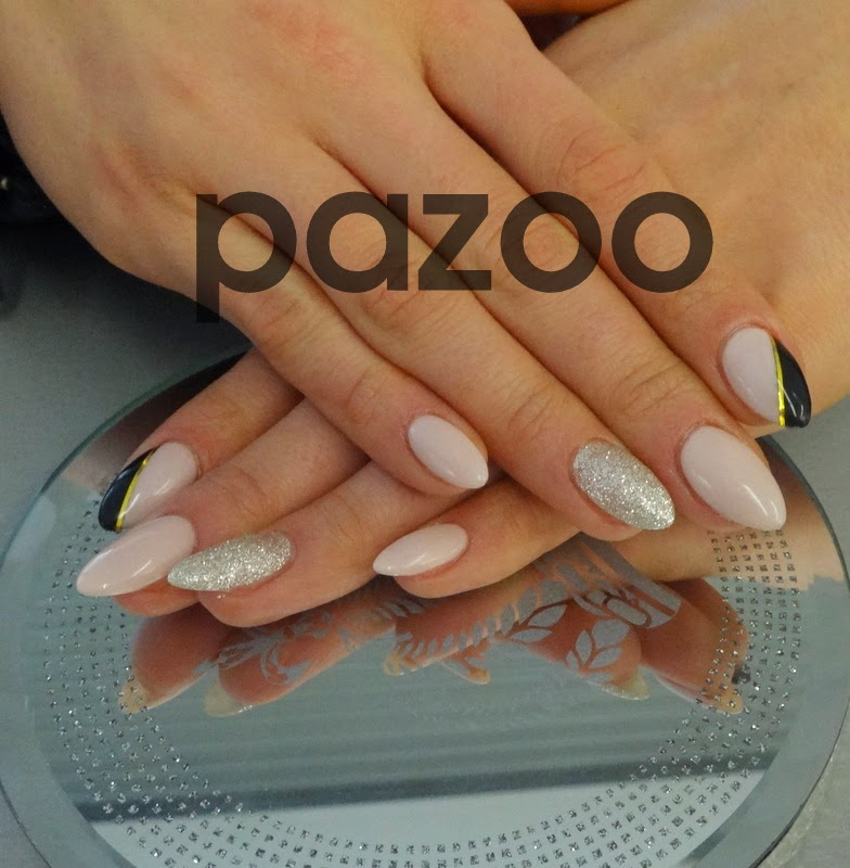 Pazoo Blog 2014