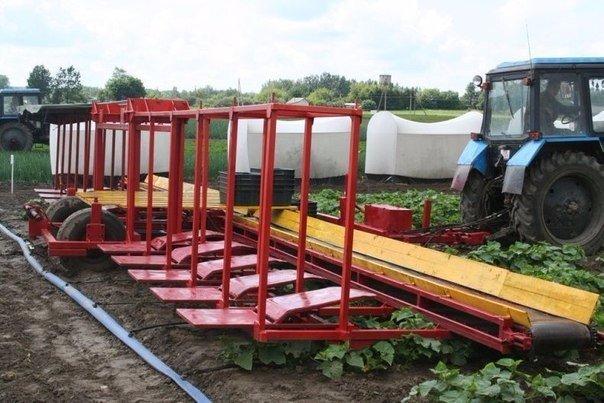 ماكينة زرعية مطورة لجمع المحاصيل الزراعية  لن تصدق فكرتها    شاهد بالصور