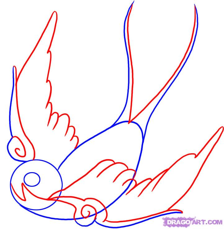 Swallow Tattoo Line Drawing : Only swallow tattoo bird designs line drawing