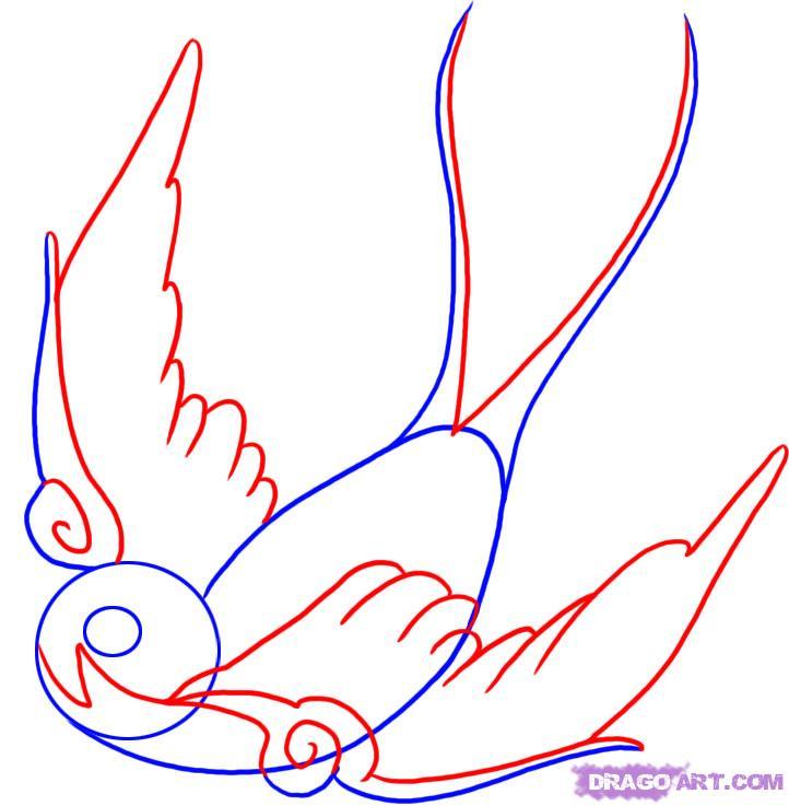 Bird Line Drawing Tattoo : Birds tattoos for you swallow bird tattoo designs line