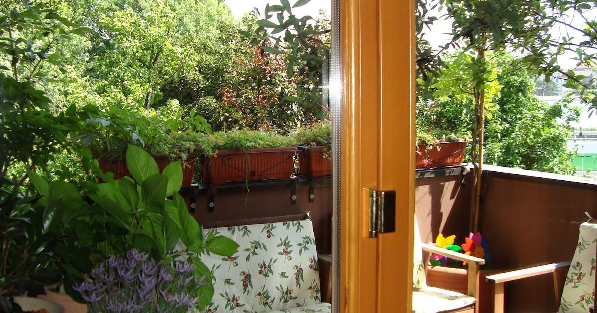 Fiore raro la finestra sul balcone - Finestra balcone ...