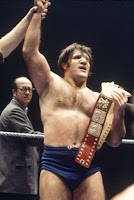 Bruno Sammartino WWE Hall of Fame