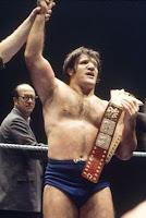 Bruno Sammartino WWE Hall of Fame