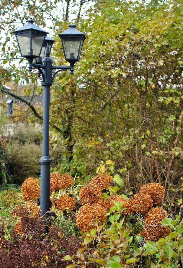 lyktstolpe höst trädgård