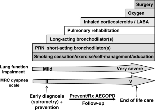 Copd Exacerbation Natural Treatment