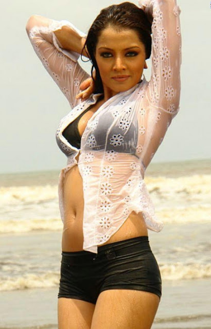 celina jaitley spicy hot images