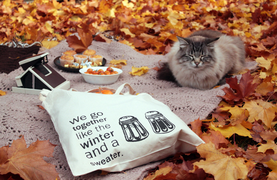 cat with a tote bag