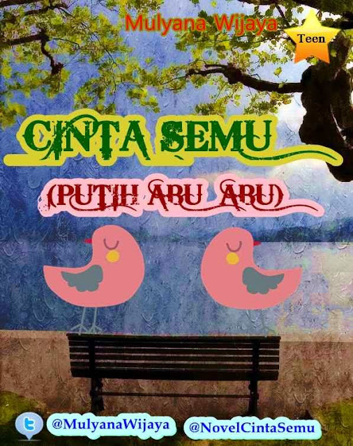 Novel Cinta Semu