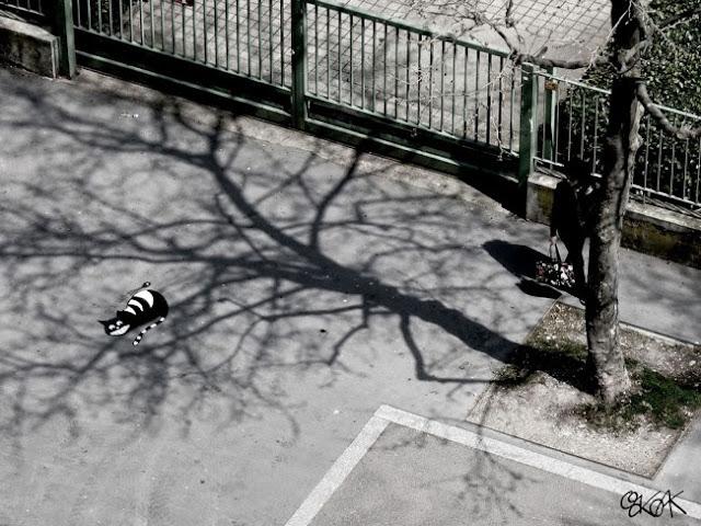 street art - Oak Oak