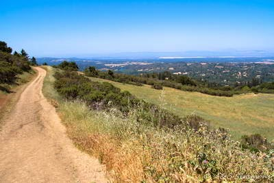 Review of WINDY HILL OPEN PRESERVE views of the Bay Area