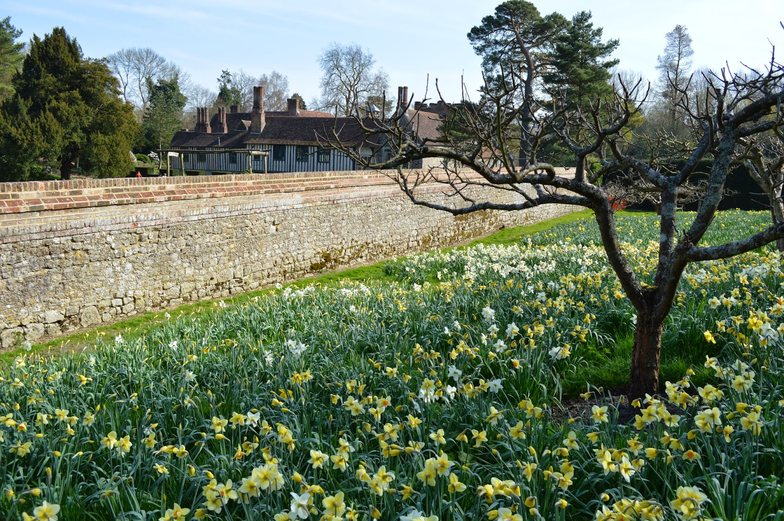 Medieval, Ightham Mote, Tudor, castle, Kent, visit, day trip, courtier, UK, history, historical, fortified, black and white beams, moat, Spring, meadow, grounds, garden, flowers,