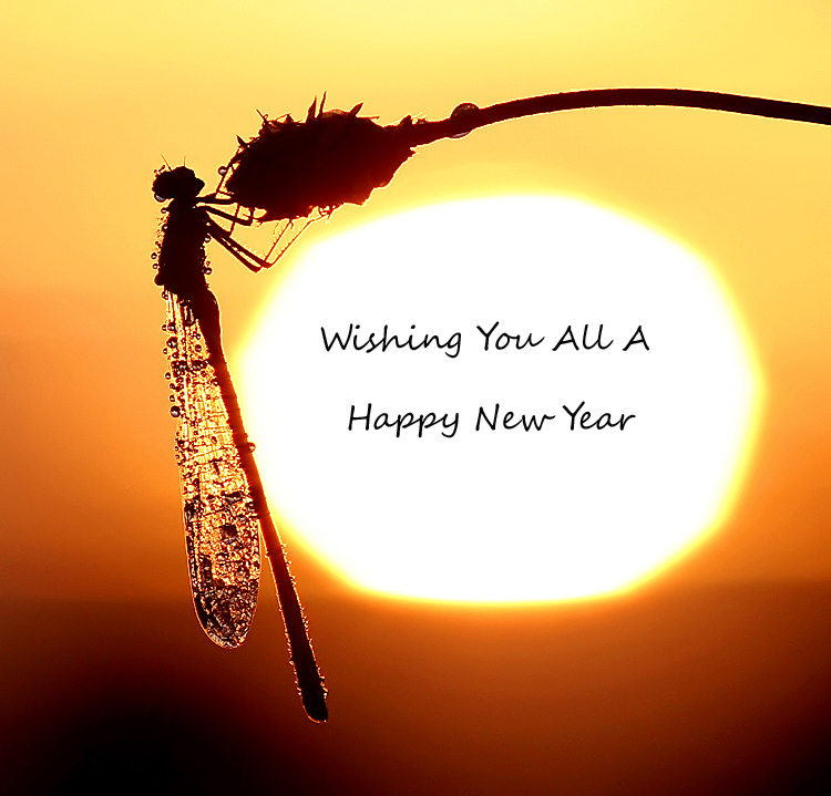 wishing you all a happy new year