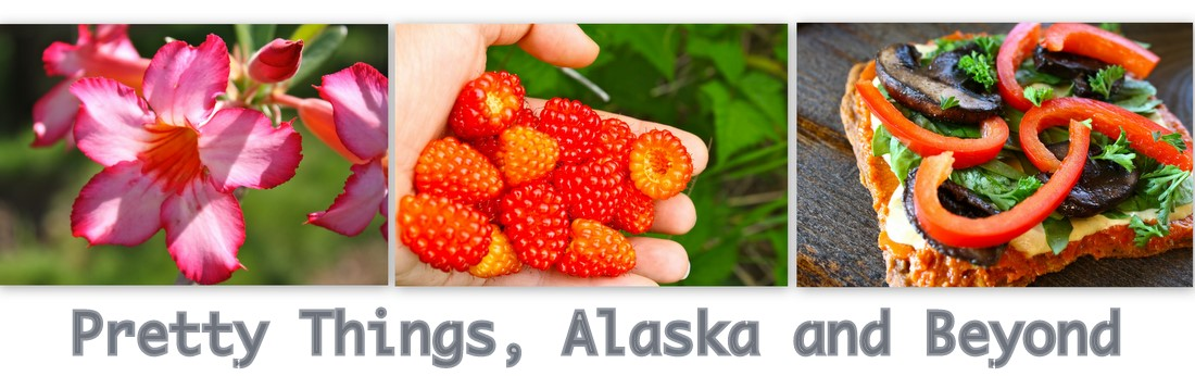 Pretty Things, Alaska and Beyond