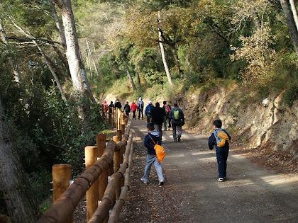 Anant per un tram de l'Anell Verd de Sant Boi de Llobregat