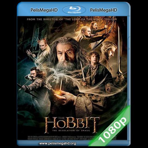 EL HOBBIT: LA DESOLACIÓN DE SMAUG (2013) EXTENDED FULL 1080P HD MKV INGLES SUBTITULADO