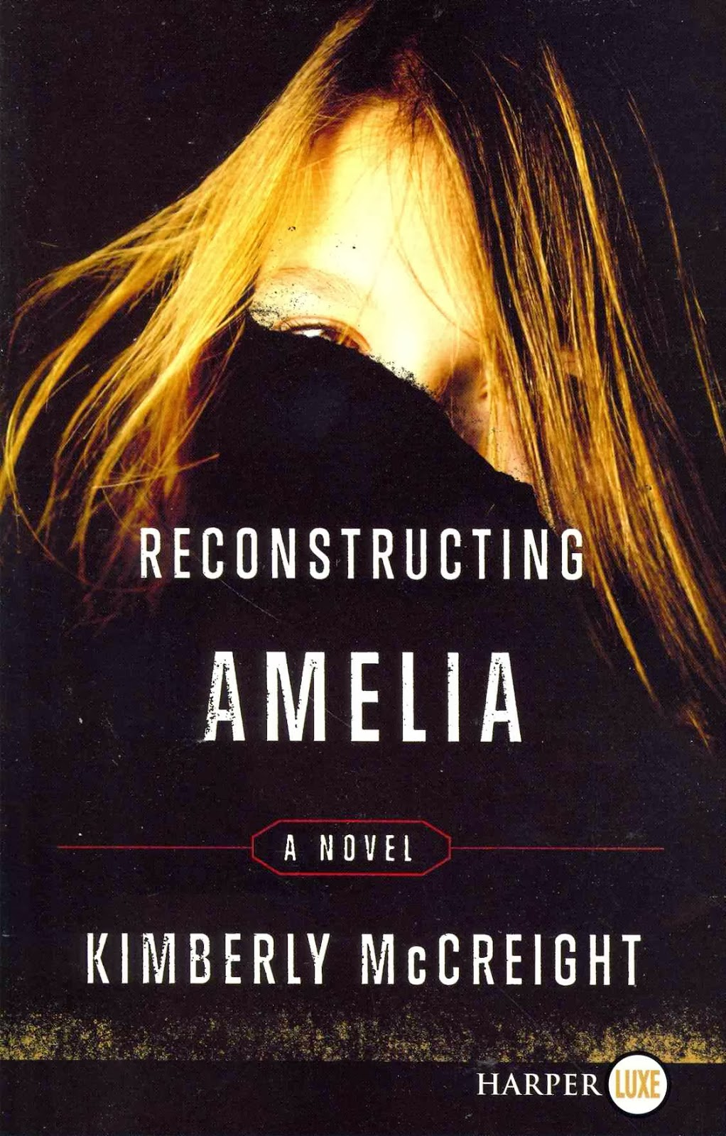 http://discover.halifaxpubliclibraries.ca/?q=title:reconstructing%20amelia