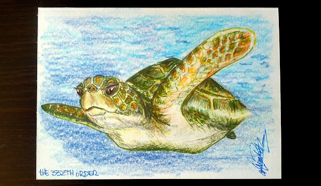 Ideas for cards, a turtle Elizabeth Casua tHE 33ZTH oRDER