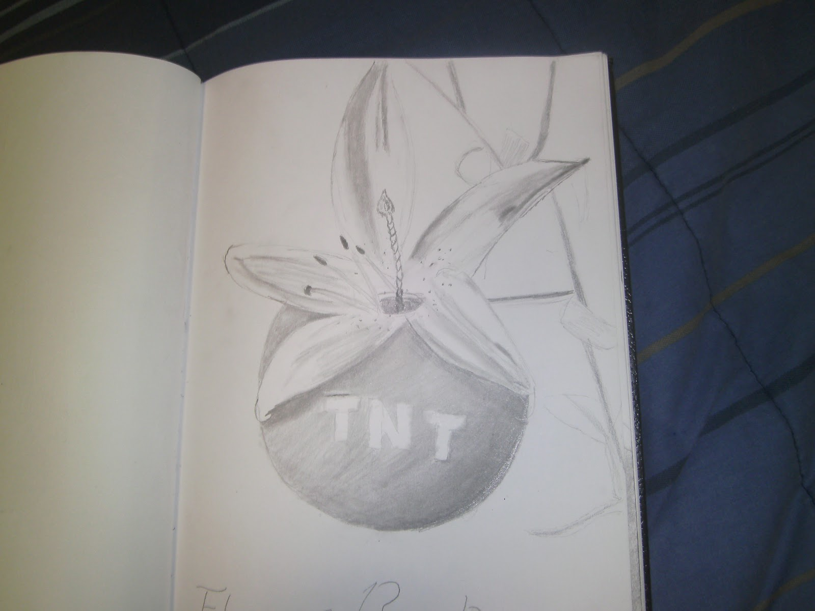 Lotus flower bomb drawing portrayed paradoxlotus flower bomb drawing izmirmasajfo